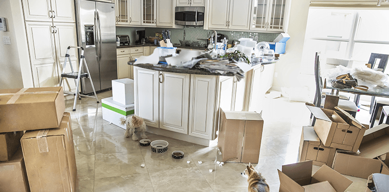 What are common mistakes when downsizing your home? Part Two - Winnipeg Downsizing - Residential Downsizing Winnipeg - Winnipeg Junk Removal - Kloos Hauling & Demolition